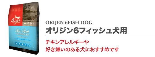 6フィッシュ ドッグ